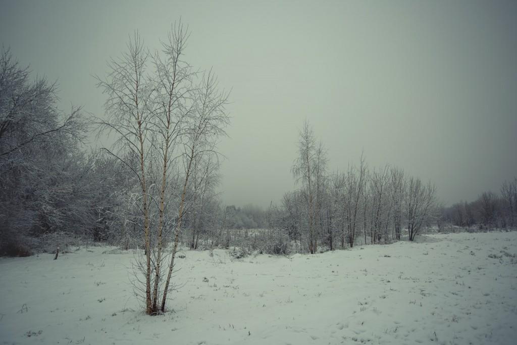 Зима в парке, Муром 01