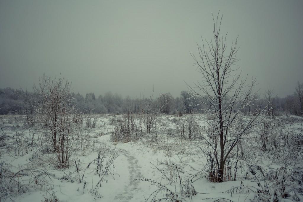 Зима в парке, Муром 02