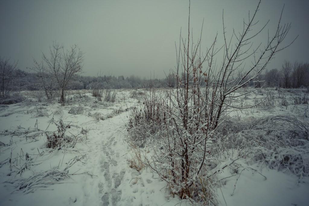 Зима в парке, Муром 04