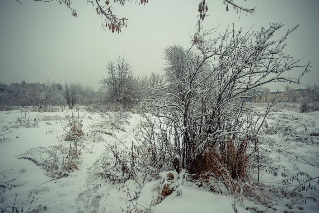 Зима в парке, Муром 06
