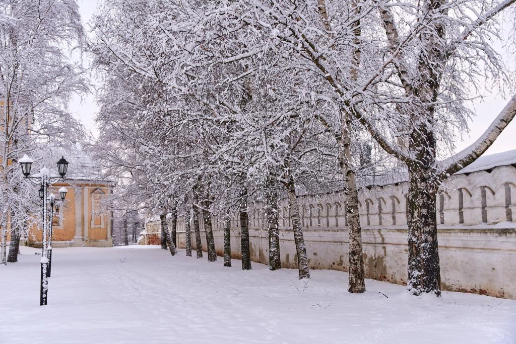 Зимний Владимир - продолжение ( декабрь 2017 ) 07