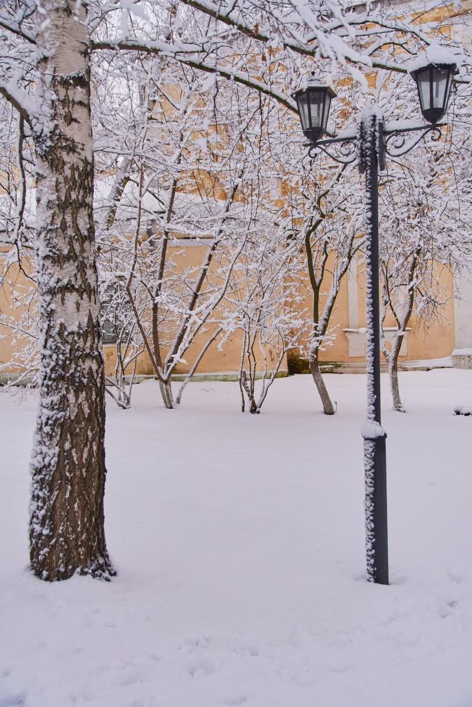 Зимний Владимир - продолжение ( декабрь 2017 ) 08