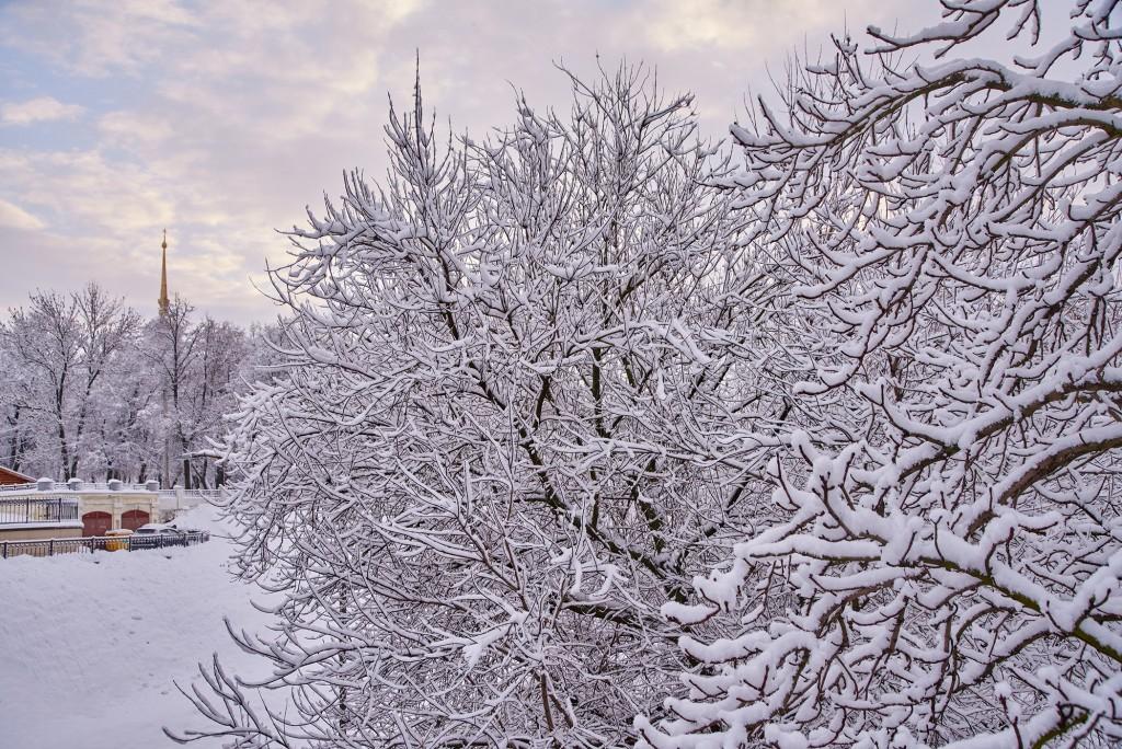 Зимний Владимир - II ( декабрь 2017 ) 03