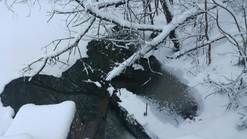 Муром снегом замело. Прогулка по снежному лесу на Вербовском. 07