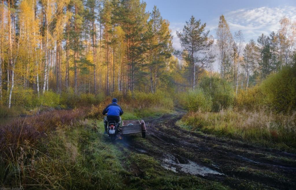 Осень в Вязниковском лесу 04