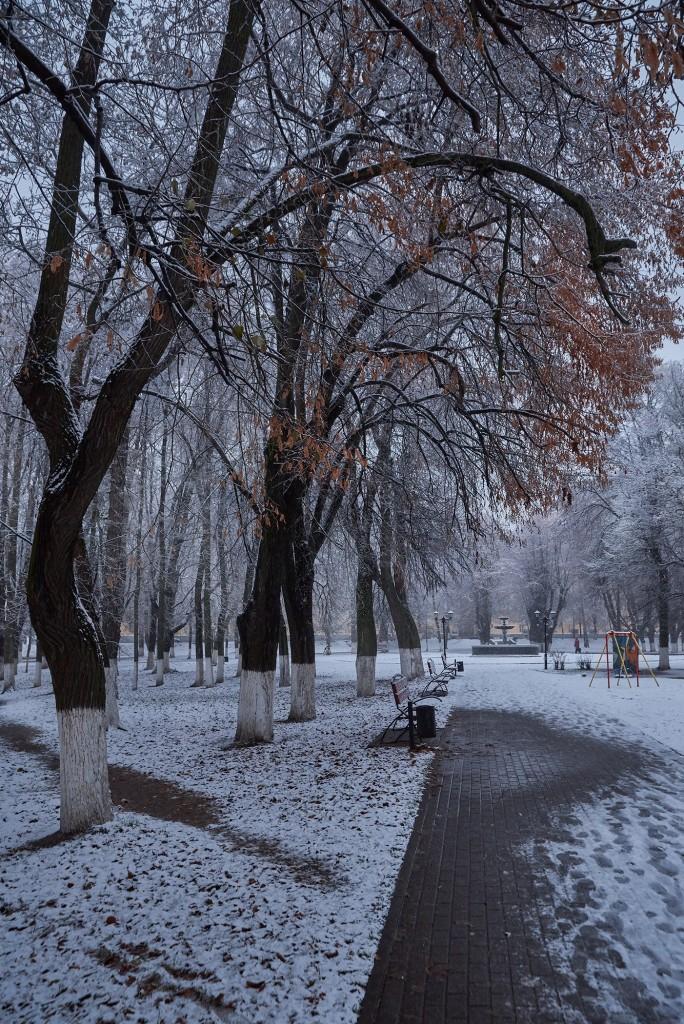 Первые дни зимы во Владимире 02
