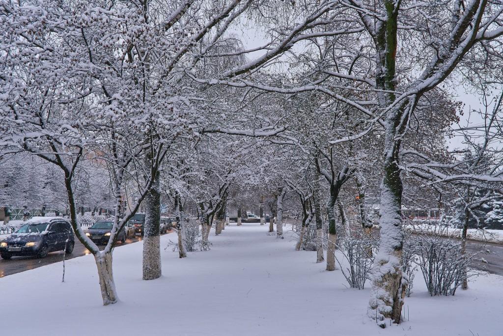 Первые дни зимы во Владимире 03