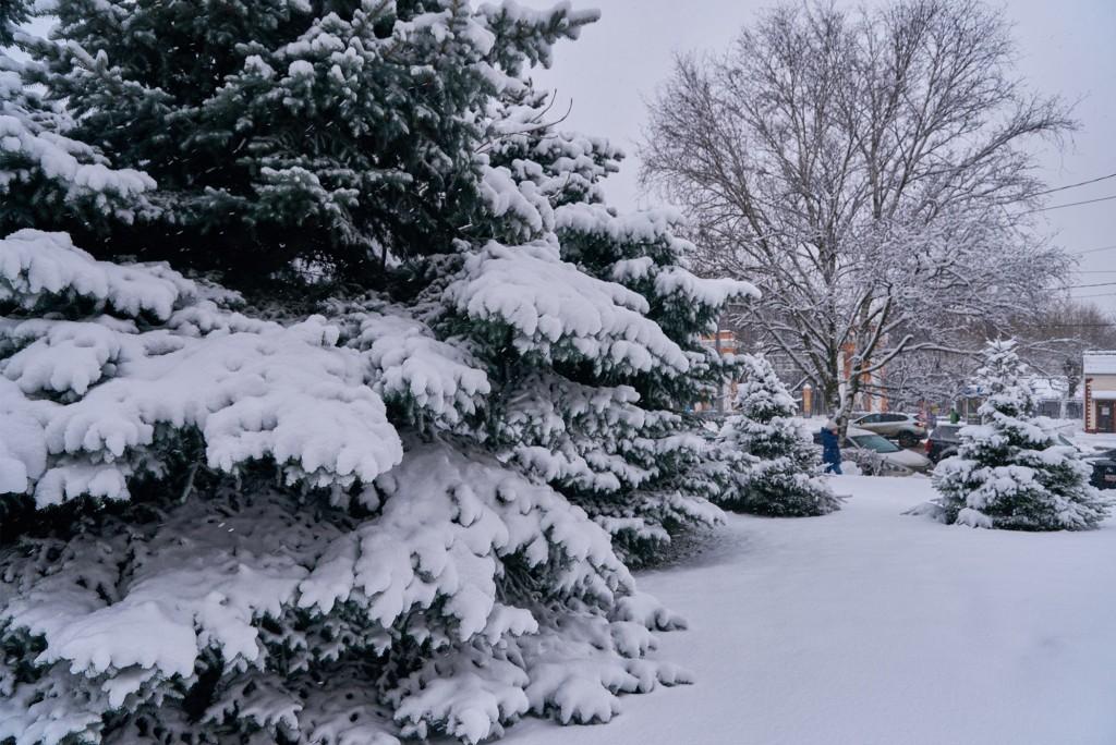 Первые дни зимы во Владимире 06