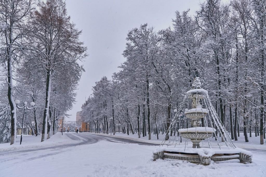 Первые дни зимы во Владимире 09