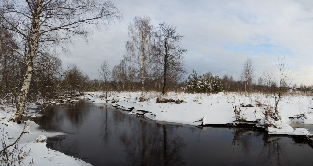 Река Вольга у д. Емельянцево зимой.