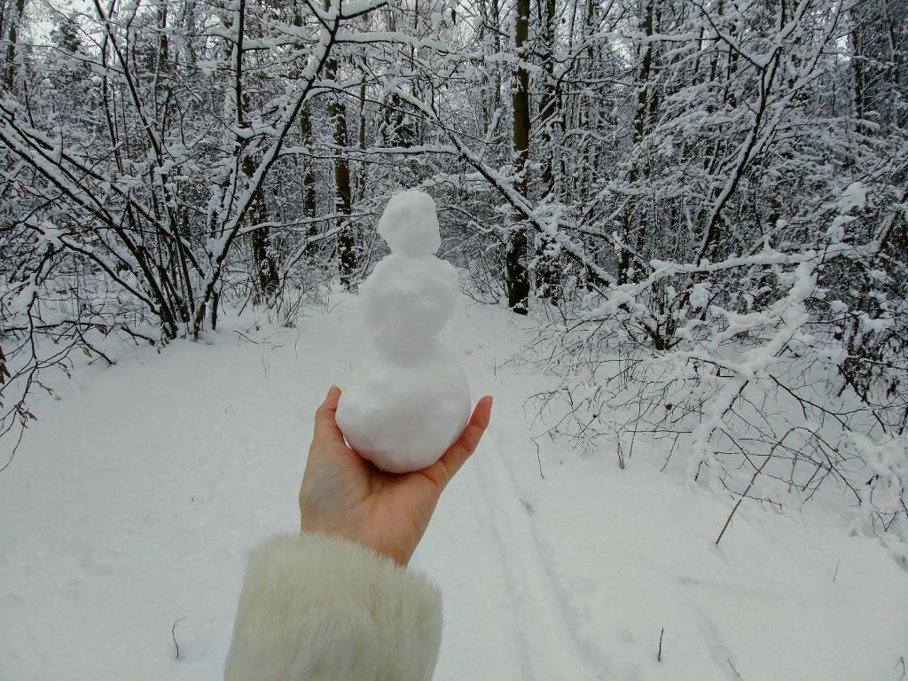 Снежных всем прогулок! 02
