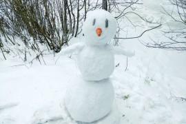 Фото ваших снеговиков!