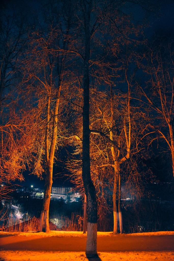 Владимирские январские сумерки 09