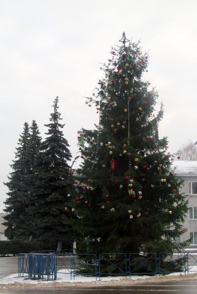 Гороховец в Рождество 01
