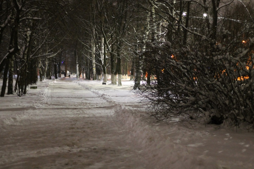 Когда зимой совсем немного снега, г.Гусь-Хрустальный 01