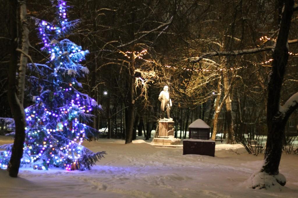 Когда зимой совсем немного снега, г.Гусь-Хрустальный 04