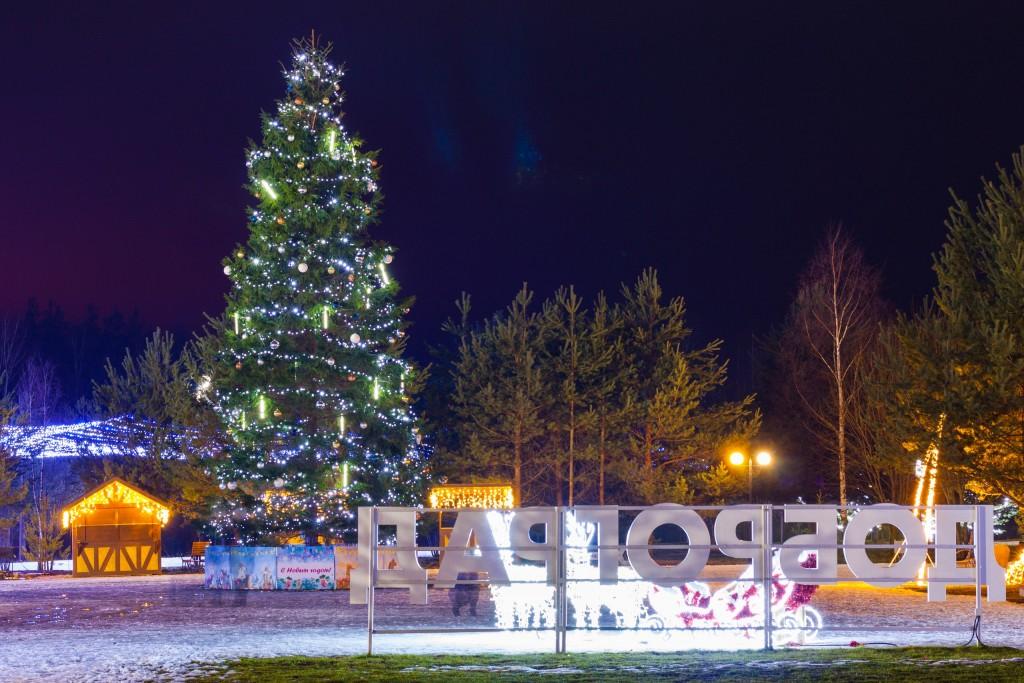 Новогодний Доброград (Ковровский район) 05