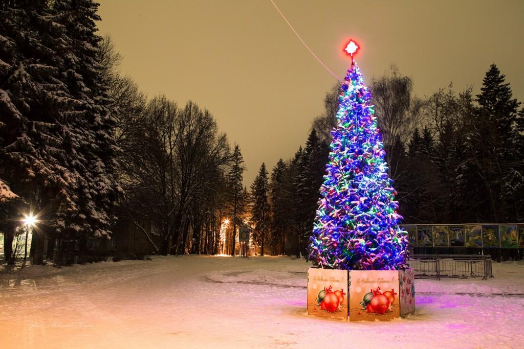 Новогодняя атмосфера в парке Мурома 02