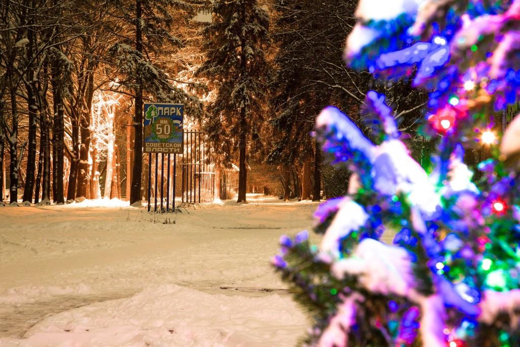 Новогодняя атмосфера в парке Мурома 03