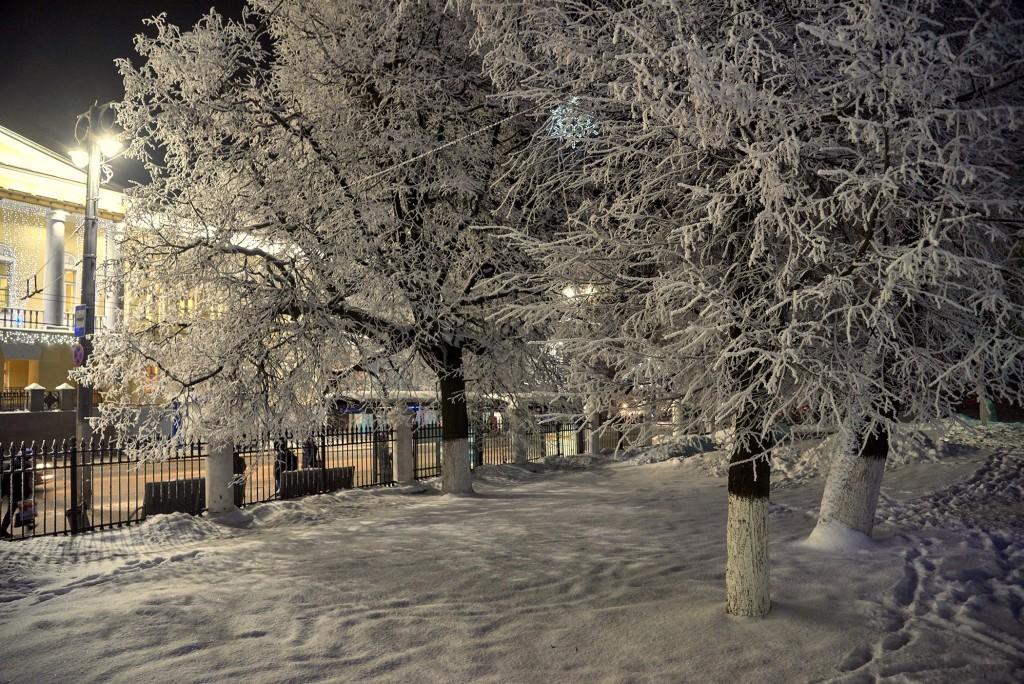 В ожидании весны... ( февраль, Владимир) 09