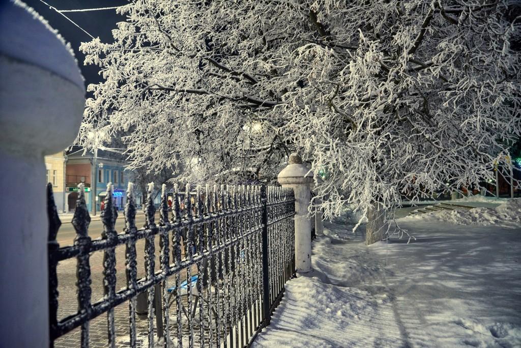 В ожидании весны... ( февраль, Владимир) 10