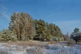 В 10 километрах от города Вязники. (Панорама).