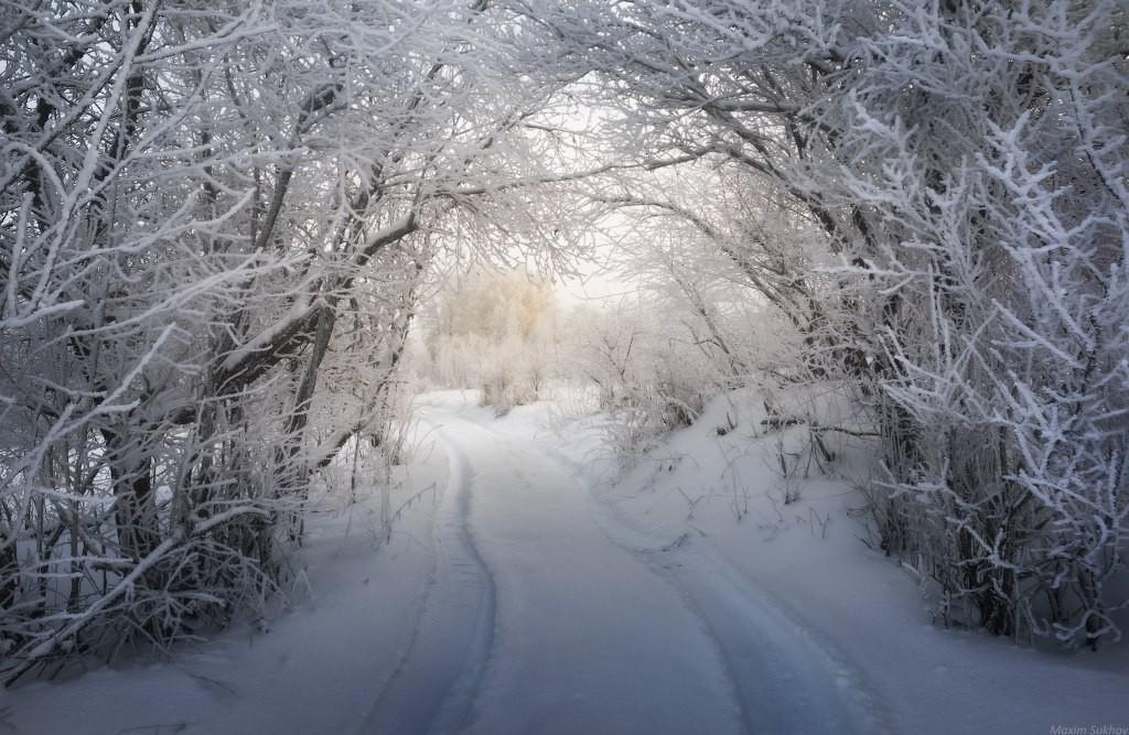 Замерзший сад. г.Вязники 02