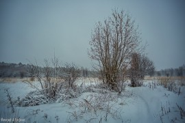 Зима в Муроме и окрестностях
