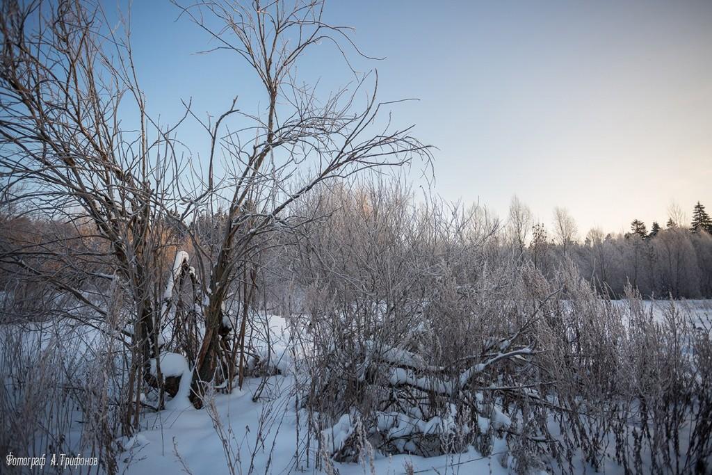 Зима в Муроме и окрестностях 07