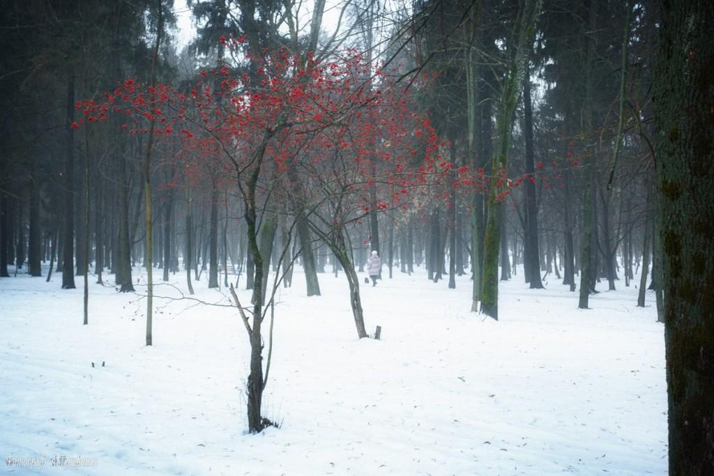 Зима в Муроме и окрестностях 09