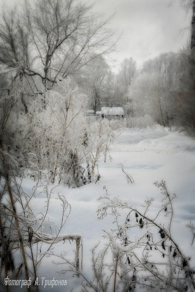 Зима в Муроме и окрестностях 10