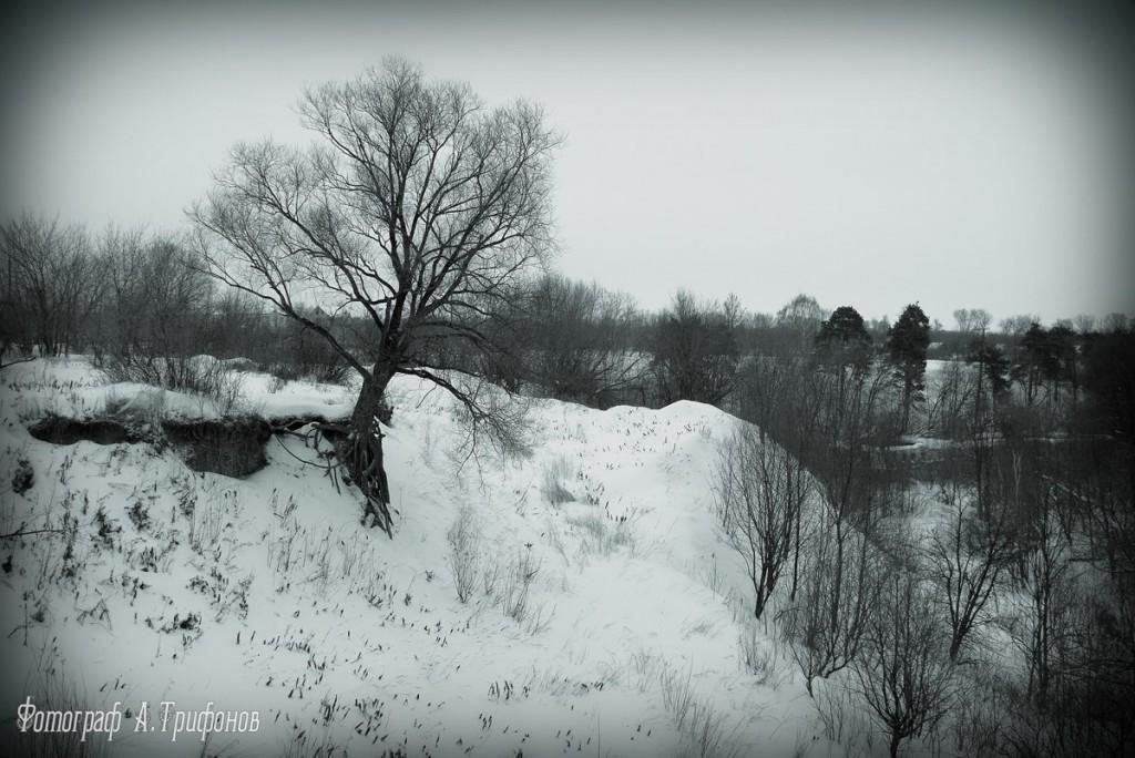 Зима в Муроме и окрестностях 15