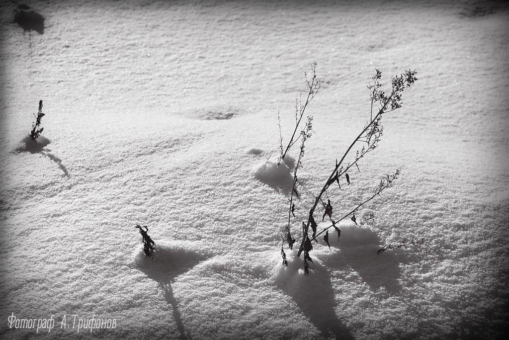 Зима в Муроме и окрестностях 18