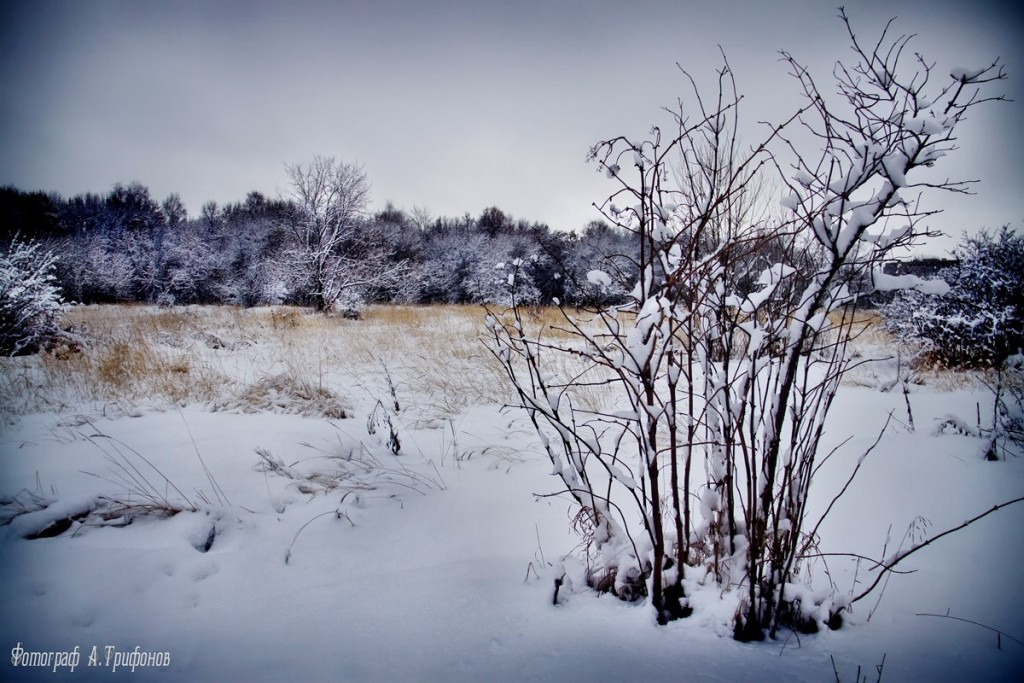 Зима в Муроме и окрестностях 33