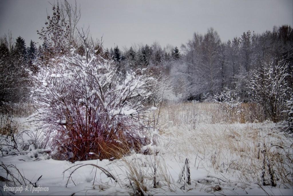 Зима в Муроме и окрестностях 34