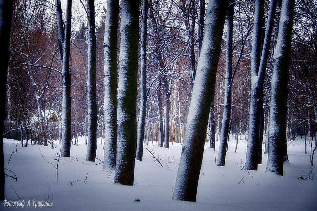 Зима в Муроме и окрестностях 35