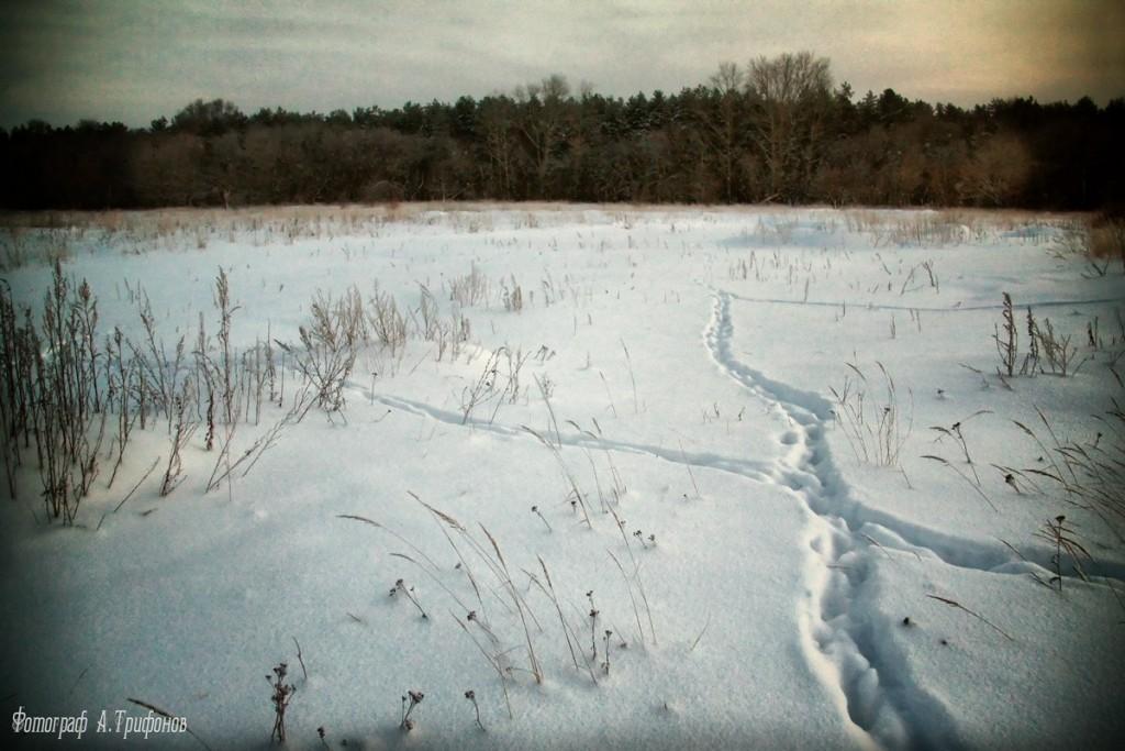Зима в Муроме и окрестностях 36