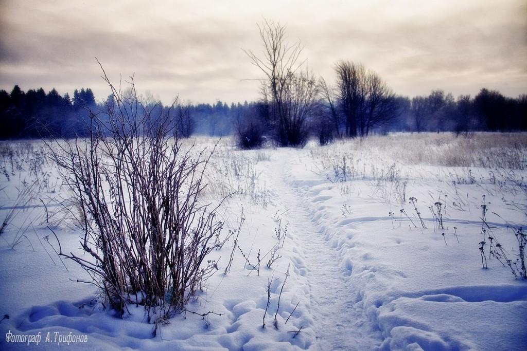 Зима в Муроме и окрестностях 38