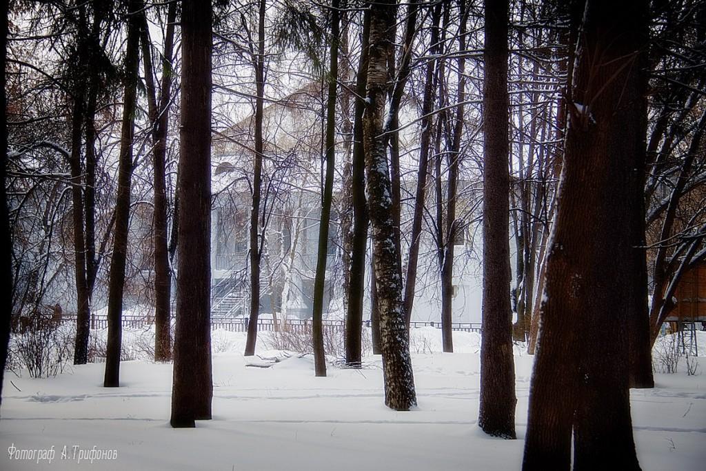 Зима в Муроме и окрестностях 42