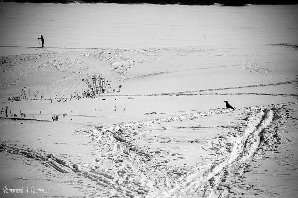 Зима в Муроме и окрестностях 47