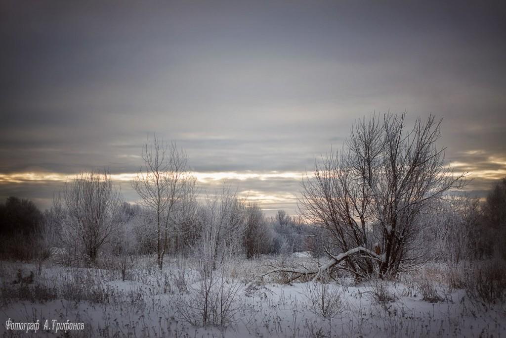 Зима в Муроме и окрестностях 49