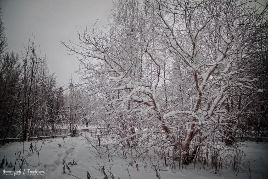 Зима в Муроме и окрестностях 54