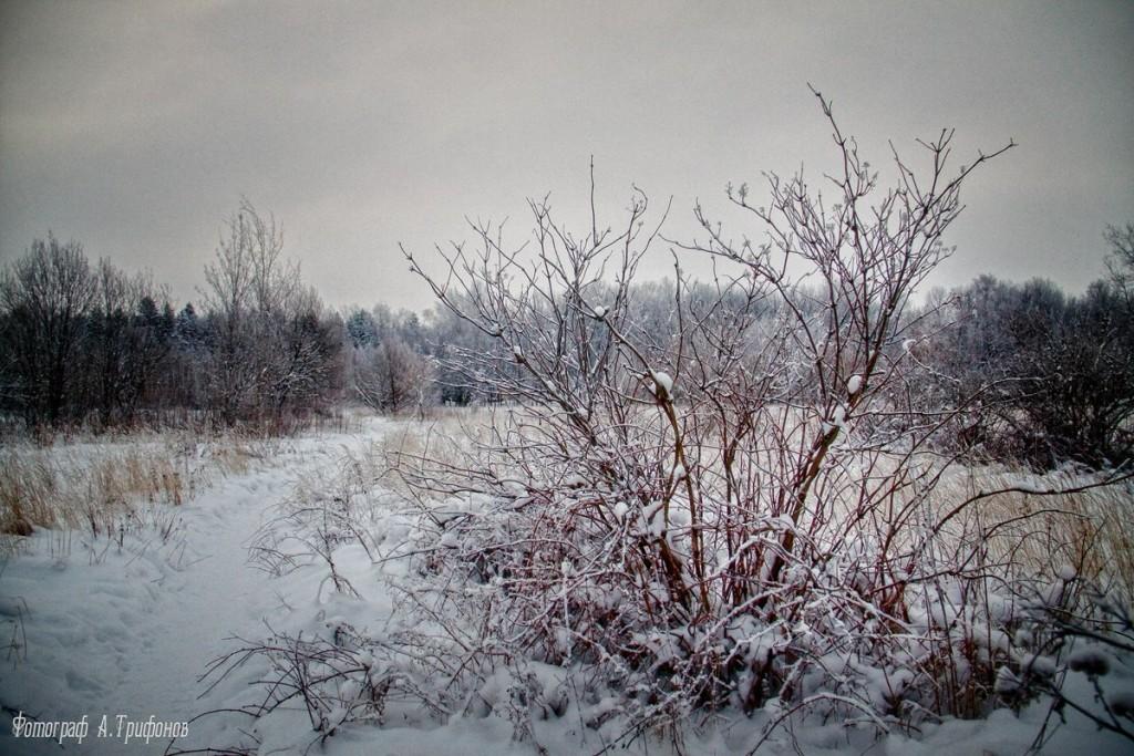 Зима в Муроме и окрестностях 60