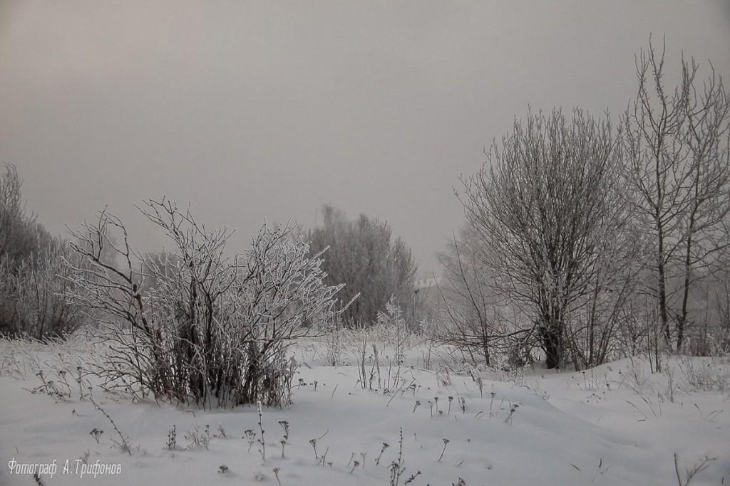 Зима в Муроме и окрестностях 62