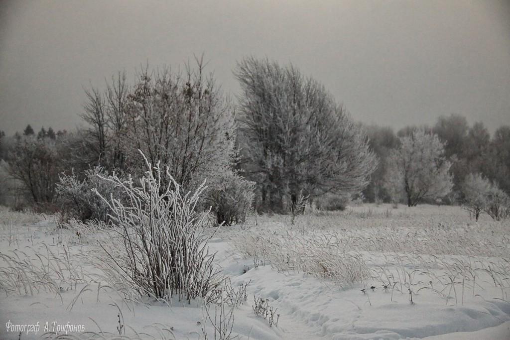 Зима в Муроме и окрестностях 63