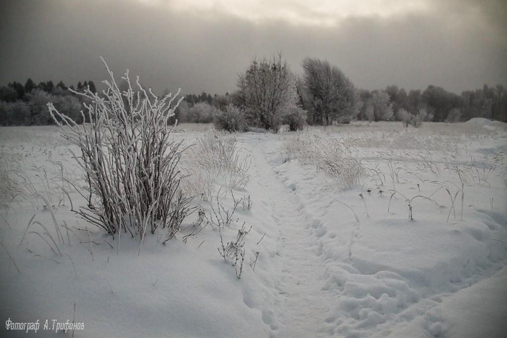 Зима в Муроме и окрестностях 64