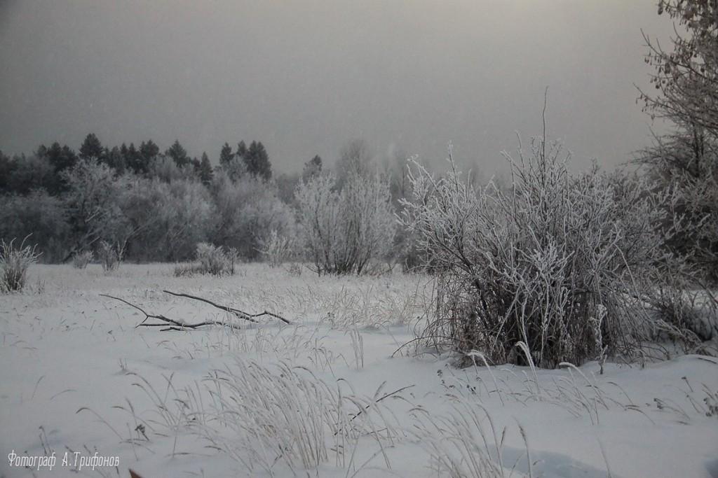Зима в Муроме и окрестностях 65