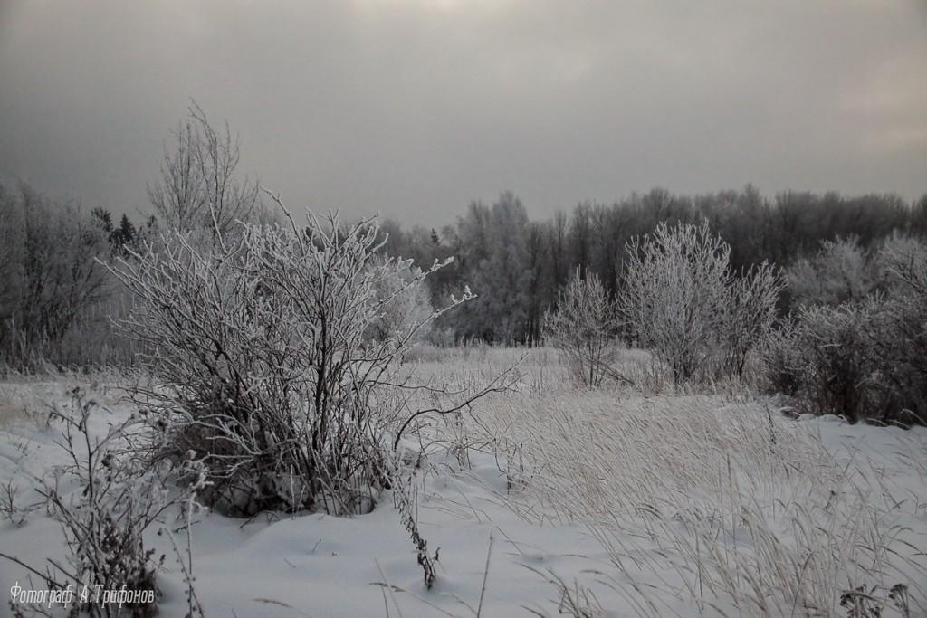 Зима в Муроме и окрестностях 68