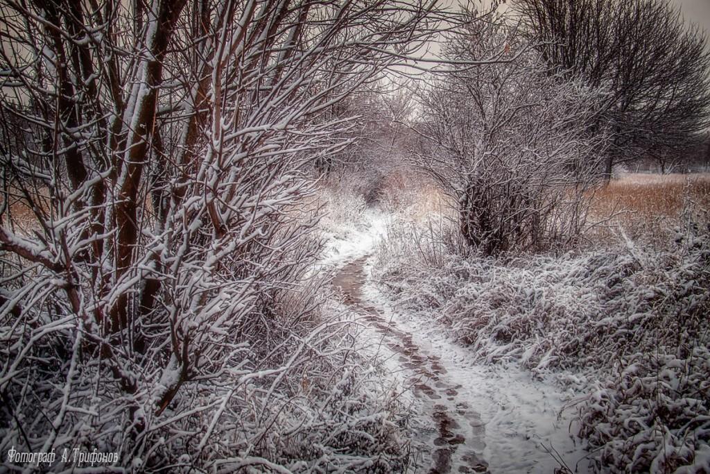 Зима в Муроме и окрестностях 73