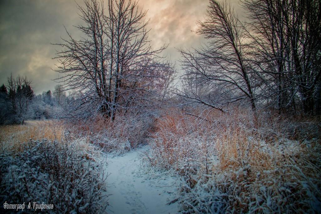 Зима в Муроме и окрестностях 74